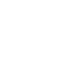 Film and tape digitization   Colour correction       Archiving   Construction/Creation of         distribution portals       Securing digital archives